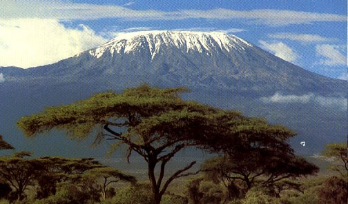 Domestic Tourism Safaris Kilimanjaro National Park